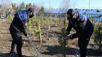 Photo of Şəkidə Xocalı soyqırımı qurbanlarının xatirəsinə 613 ağac əkilib