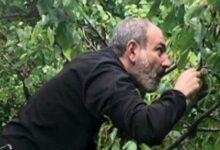 """Photo of Erməni siyasətçi: """"Dronun səsini eşidən Paşinyan elə qaçırdı ki, mühafizəçilər ona çatmırdı"""""""