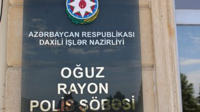Photo of Oğuzda mal-qara oğurlayan qardaşlar saxlanılıb
